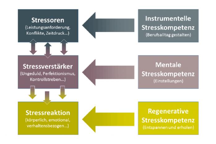 Kaluza Stresskompetenz.png
